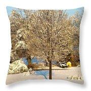 Winters Bradford Pear Throw Pillow