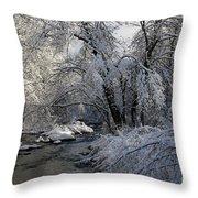 Winter's Canvas Throw Pillow
