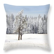 Winter's Coat Throw Pillow by Dee Cresswell