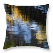 Winters Color Throw Pillow