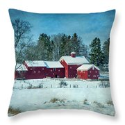 Winter's Colors Throw Pillow