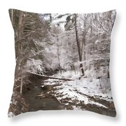 Winter's Country Stream Throw Pillow