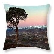 Winter's Dawn Throw Pillow