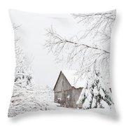 Winter's End Throw Pillow