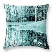 Winter's First Snowfall Throw Pillow