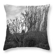 Winters Garden Throw Pillow