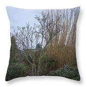 Winters Garden In Seattle  Throw Pillow