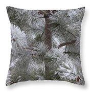 Winter's Gift Throw Pillow