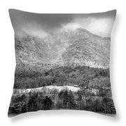 Winters Grace Throw Pillow