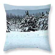 Winter's Love  Throw Pillow