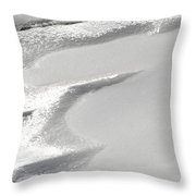 Winter's Patterns Throw Pillow