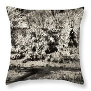 Winter's Sepia Grip Throw Pillow