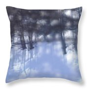 Winters' Shadow Throw Pillow