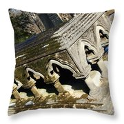 Winter's Snow Is Almost Gone Throw Pillow