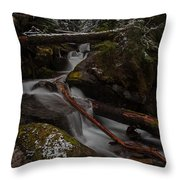 Winters Stream Flow Throw Pillow