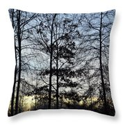 Winter's Trees At Dusk Throw Pillow