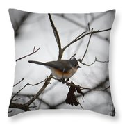 Winter's Tufted Titmouse Throw Pillow