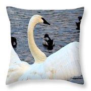 Winter's White Swan Throw Pillow