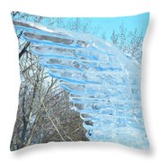 Winter's Wings Throw Pillow