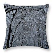 Winter's Work Throw Pillow