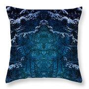 Winterscape 2 Throw Pillow
