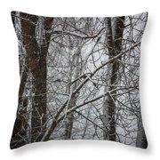 Wintery Day Throw Pillow