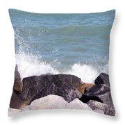 Winthrop Splash Throw Pillow