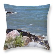 Winthrop Water Throw Pillow