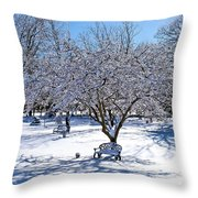 Wintry Day At The Park Throw Pillow