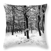 Wintry Woods Throw Pillow
