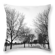 Windy Road Throw Pillow
