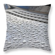 Wipers Throw Pillow