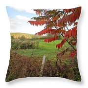 Wire Fenced Field Throw Pillow