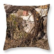 Wire Roll Throw Pillow