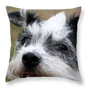 Wired For Laughs Throw Pillow