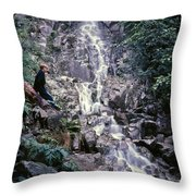 Wirt At Falls In Bc Throw Pillow