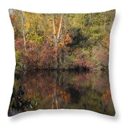Wisconsin Beauty Throw Pillow