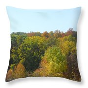 Wisconsin Colors Throw Pillow