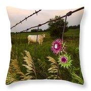 Wisconsin Evening Throw Pillow