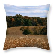 Wisconsin Fields In Late Summer Throw Pillow