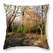 Wisconsin Scenic View Throw Pillow
