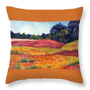 Wisconsin Summer Throw Pillow