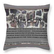 Wisdom In Stone Inspirational Throw Pillow