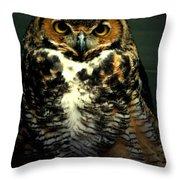 Wise Throw Pillow