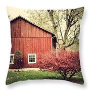 Wise Old Barn Summertime Throw Pillow