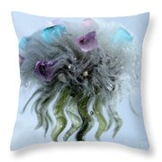 Wish Beyond Throw Pillow