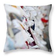 Wish Wall To Church Of Mary Ephesus Turkey Throw Pillow