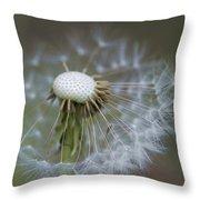 Wispy Dandelion Fluff Throw Pillow