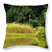 Wispy Wild Grass Reflections Throw Pillow