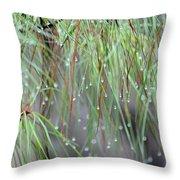 Wispy Winter Raindrops Throw Pillow